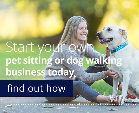 Pet Sitters & Dog Walkers